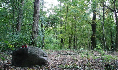 Dawny cmentarz w Porszewicach